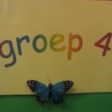 Groep 4