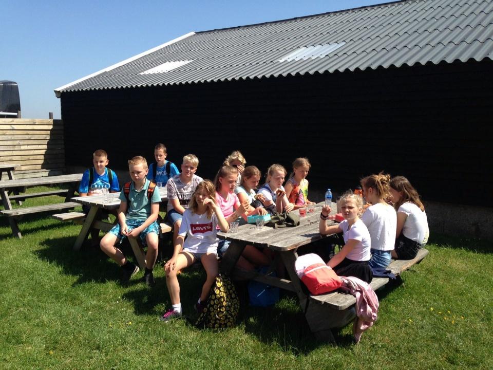 Vandaag de eerste dag Texel met groep 8. Gespannen koppies om 9 uur in de groep, grote tassen met slaapzakken, prachtige fietsen en heel veel vaders en moeders met aanhangwagens en auto's waar alle spullen in konden.Om half tien vertrokken we , uitgezwaaid door de hele school en alle ouders.Een gezellig ritje naar Den Helder en, na een knuffel voor de meegereden ouders, de boot op. Juf Marianne stond ons al op te wachten en hierna gingen we fietsend naar de kampeerboerderij. Bij de boerderij stonden José en Sandra, juf Marianne en de mama en oma van Laura ons al op te wachten. De kampeerboerderijeigenaar was er ook en vertelde waar we allemaal mochten en wat we konden doen op en rond de boerderij. Er zijn hier nl. heel veel dieren, heel veel speelmogelijkheden en een prachtig voetbalveld. Na de uitleg vertelde meester Bert wie waar ging slapen. De slaapzalen zijn verdeeld over de twee meesters, Gert en juf Ingrid dus dat belooft gewoon lekker slapen ???.Na wat eten en drinken zijn we op de fiets naar de Slufter gereden. Het was - en is - prachtig weer en het was een gezellige, en drukke, fietstocht. In de Slufter een stuk gelopen naar het water en daar heerlijk gespeeld, drijfnat gewordem, duinen beklommen, gevoetbald, schelpen gezocht en geluierd.Weer bij de fietsen trakteerde Jan op een heerlijk ijsje ! en zijn we terug gefietst. De tomatensoep, gehaktballen met appelmoes en bloemkool en het toetje waren zalig, met hulde aan Sandra en José.De meeste kinderen staan nu onder douche, het zand zit op de raarste plekken, en straks gaan we.... opnieuw naar het strand,maar dat weten de kinderen nog niet.
