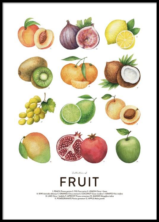 fruit week 5voor onze locatie komende week fruit voor de woensdag én voor maandag 3 en dinsdag 4 februari.1 cantaloupe meloen per 12 leerlingen1 mango per 4 leerlingen1 appel per leerling