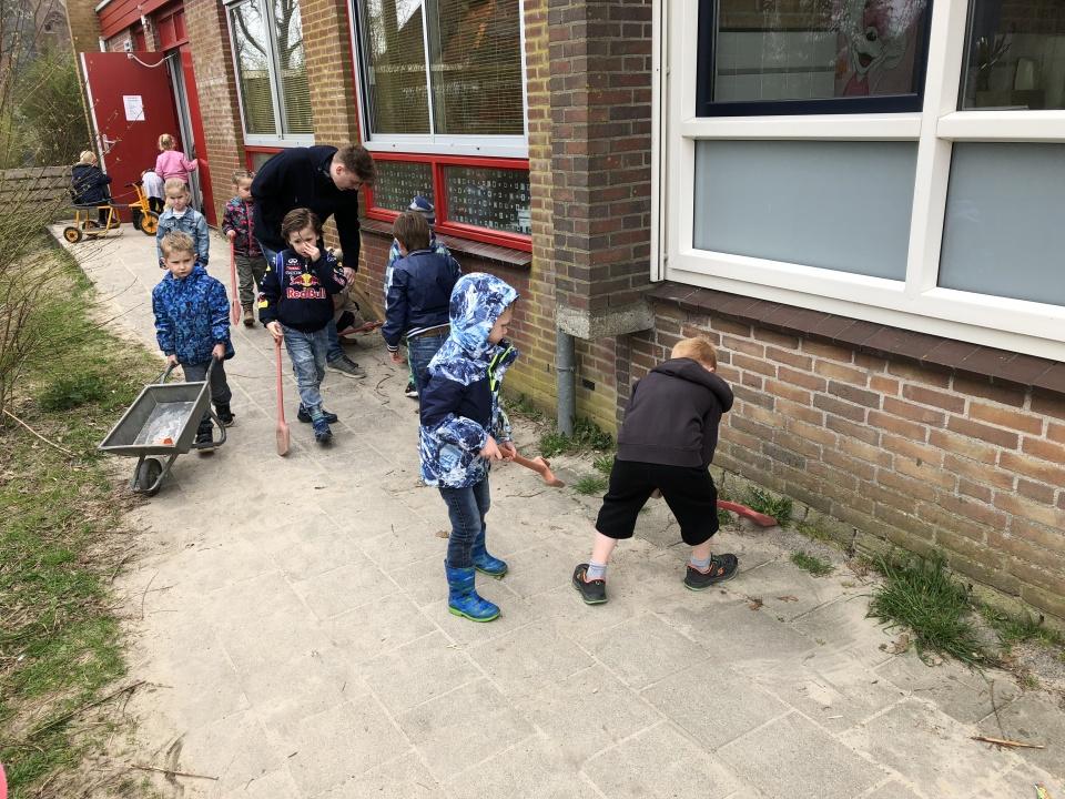 Bij het thema bloemen en planten (en de tuin) hoort ook het onderdeel onkruid wieden en vegen ?Bijkomend voordeel: het schoolplein ziet er weer wat netter uit ?De kleuters waren zeer enthousiast bezig met meester Daan ????